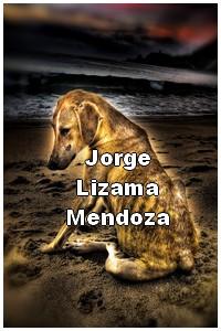 cybermedios-lizama-fotografia-hdr- perrito playa
