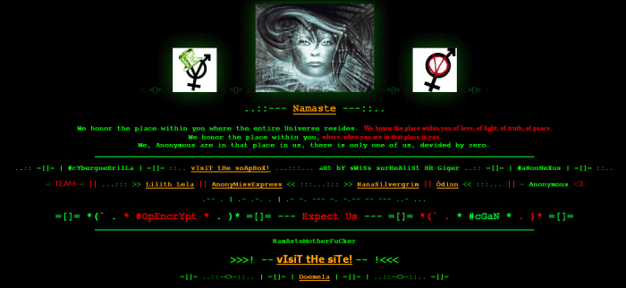cyberguerrilla
