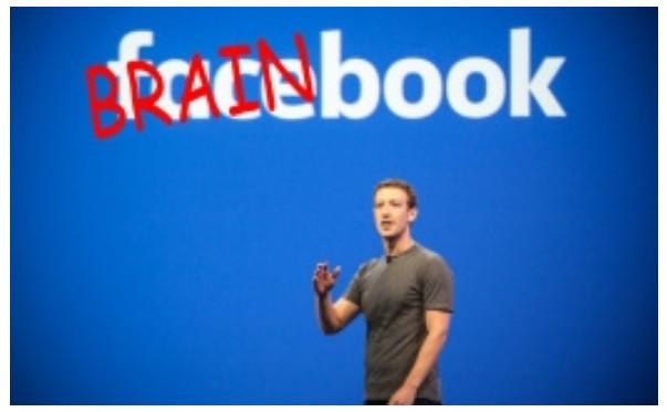 brainbook2